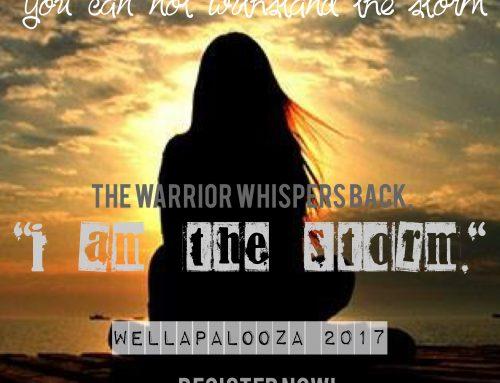 Wellapalooza 2017 Video